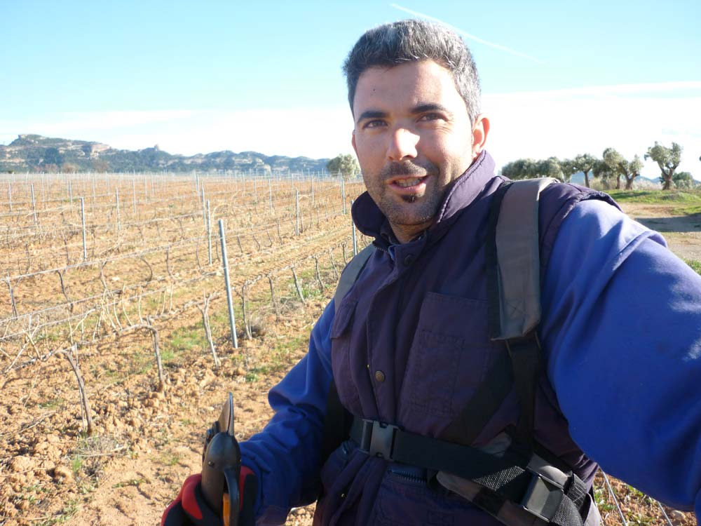Sisco Roselló Chertó | Soci d'Agrícola Sant Josep